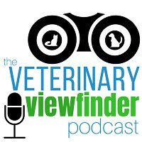 It's Our 4-Year Anniversary, Feedback on Veterinary Influencers Episode, and Feeling Grateful during the Holidays