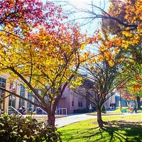 #114 Where Communities Go to College