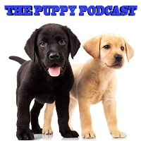 The Puppy Podcast - The Final!