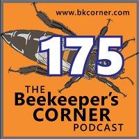 BKCorner Episode 175 - Intervention