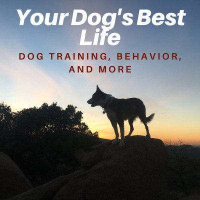 Your Dog's Best Life