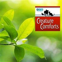 Creature Comforts | Wildlife Mississippi