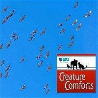 Creature Comforts | Mississippi Migration