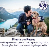 Finn to the Rescue - Featuring Henry Friedman of Team Dogist and Dog Dad to @keepingfinn sharing how a rescue dog changed his life