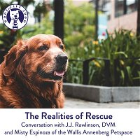 The Wallis Annenberg Petspace: Realities of Rescue & Considering a Senior Pet