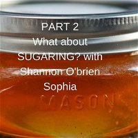 Part 2 of Let's talk Sugaring with Shannon O'Brien Sophia of SugarU