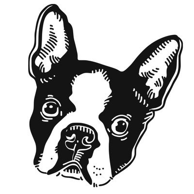 The Boston Terrier Society