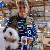 Kate Morreale 25 Years Breeding & Showing Silkies