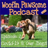 Episode 2 - Covid-19 and your Dog