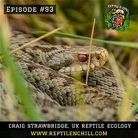 Craig Strawbridge, UK Reptile Ecology - 93 Reptile n Chill
