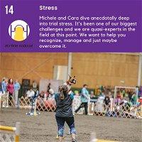 Episode 14 - Stress