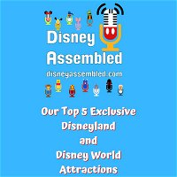 Our Top 5 Exclusive Disneyland and Disney World Attractions