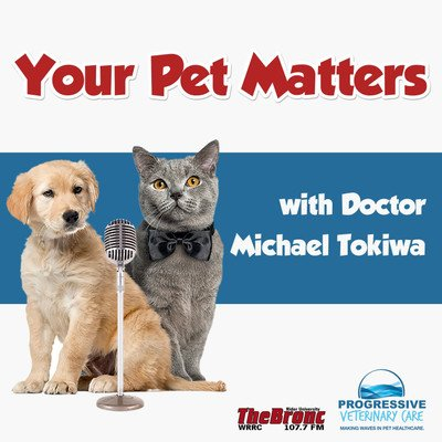 Your Pet Matters(Official 107.7 The Bronc Podcast)