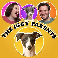 Episode 23 - Moving with a Puppy