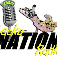 Shawn Gray of Night Glow Reptiles and H.E.R.P.S talks about running and expo.