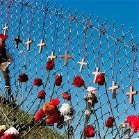 S3E36 / Gun Violence in America / Where do we go from here?