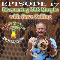 Episode 17 - Discovering BRB Morphs with Dave Colling