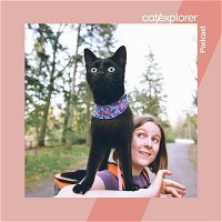Adopting blind cats across Europe and catexploring with them with Krista, Kira and Kahlil