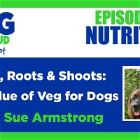 Leaves, Roots & Shoots: The Value of Veg for Dogs