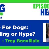 CBD For Dogs: Healing or Hype?