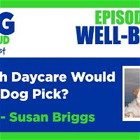 Which Daycare Would Your Dog Pick?