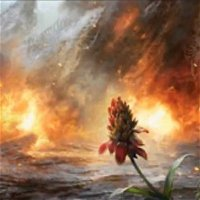 """""""This Is Fine"""": Wildfire Comes for Modern and Pioneer"""
