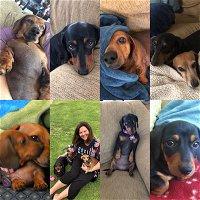 #28 - Rhonda's Four Wieners