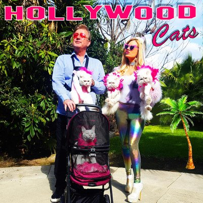 Hollywood Cats Podcast