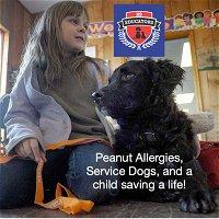 Episode 9: Saving a Service Dogs Life