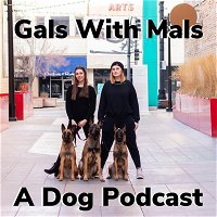 Episode 31: It's Pet Cancer Awareness Month