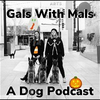 Episode 27: Spooky Dog Stories part 2 and 3
