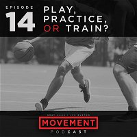 Play, Practice or Train?