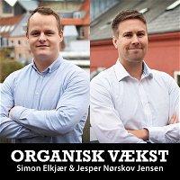 Rapport: Dansk E-handel 2020 - Bliv klogere på danskernes online-forbrug 🇩🇰