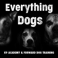 #11: Courtney Trauzzi: Lessons from working at the Emergency Vet and Fostering almost 100 dogs!