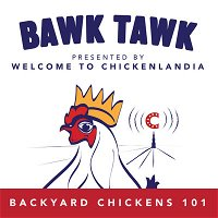 Episode 15: Quarantining NEW CHICKENS!