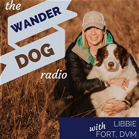 001: Conservation Detection Dogs with Rogue Detection Teams