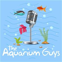 #66 –  Fishes of the Orinoco