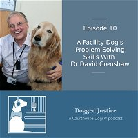 A Facility Dogs Problem Solving Skills With Dr David Crenshaw