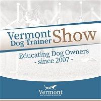 Vermont Dog Trainer - Positive Reinforcement & Balanced Training - Chit Chat