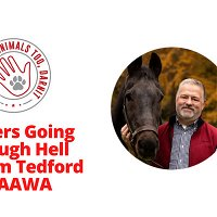 Episode 25 - Shelters Going Through Hell with Jim Tedford of AAWA