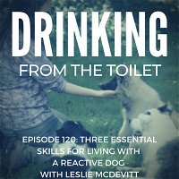 #120: Three Essential Skills for Living with a Reactive Dog with Leslie McDevitt