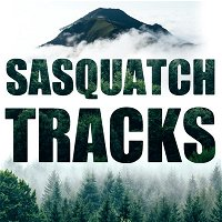 Sasquatch and Government: Official Files and Bigfoot Encounters | ST 006