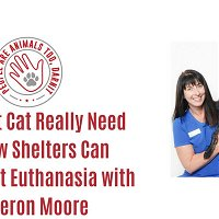 Episode 32 - Does That Cat Really Need Us? How Shelters Can Reduce Cat Euthanasia with Cameron Moore