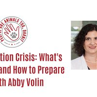 Episode 31 - The Eviction Crisis: What's Coming and How to Prepare with Abby Volin