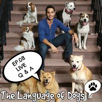 EP. 08 Live Feed Dog Q&A