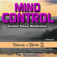 Mind Control Sleep Meditation Podcast