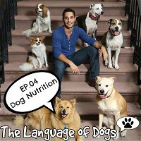 EP. 04 Dog Nutrition