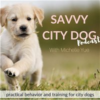 Should I bell train my puppy for potty training?