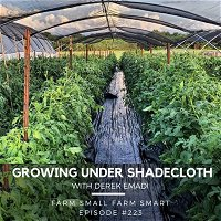 The Many Benefits of Growing Vegetables Under Shade Cloth (FSFS223)