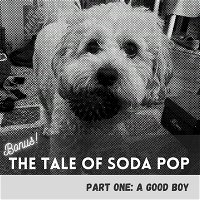 The Tale of SodaPop: Part One